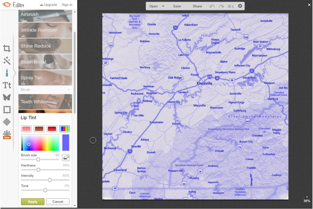Pic Monkey Colorized Map Tutorial to make your own photo mat