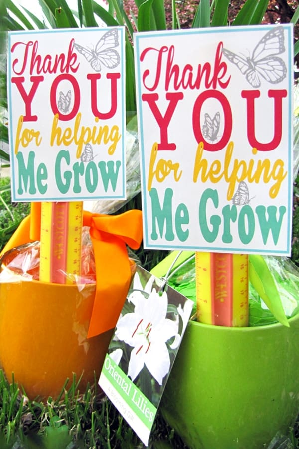 Orange and green pots with wrapped seeds, ruler, and thank you for letting me grow card for teachers on grass.