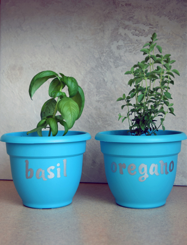 Blue and Silver Labeling of containers for Window Herb Garden