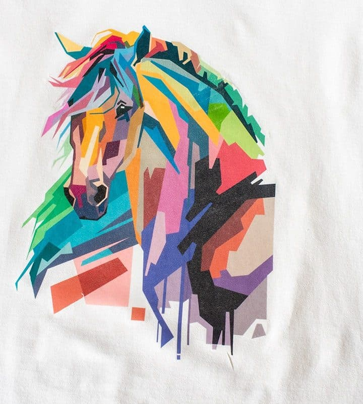 Final Photo Transfer of a Brightly Colored Horse Head