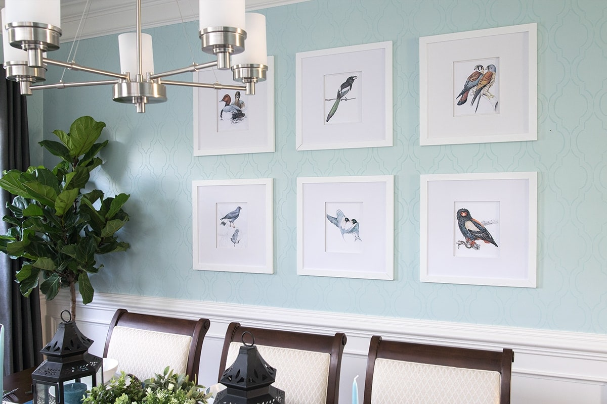 Soft blue stenciled dining room wall with white wainscoting. Set of white framed birdlife artwork, complimented with potted greenery.