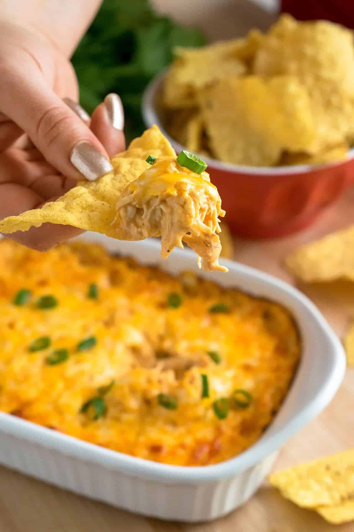 Baked buffalo chicken dip served on tortilla chip, topped with melted cheese and garnished with chives.