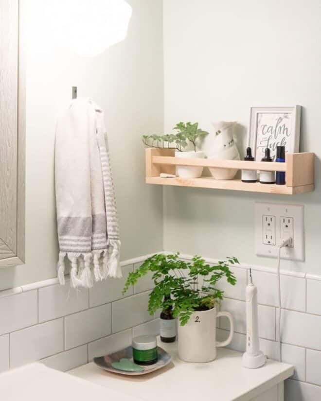Green and white bathroom with an IKEA belkram shelf filled with bathroom accessories and a plant.