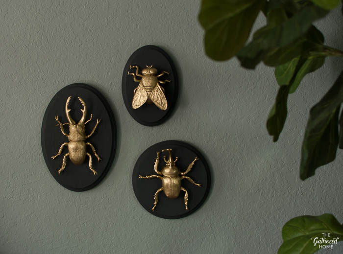 Metallic painted insect models on black plaques.