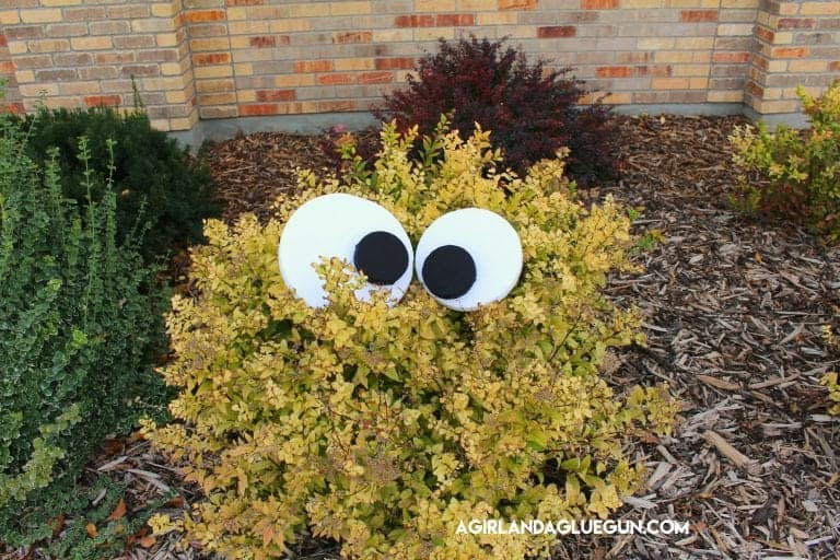 A yard monster made from putting large eyes in the bushes for an easy DIY Halloween decoration.