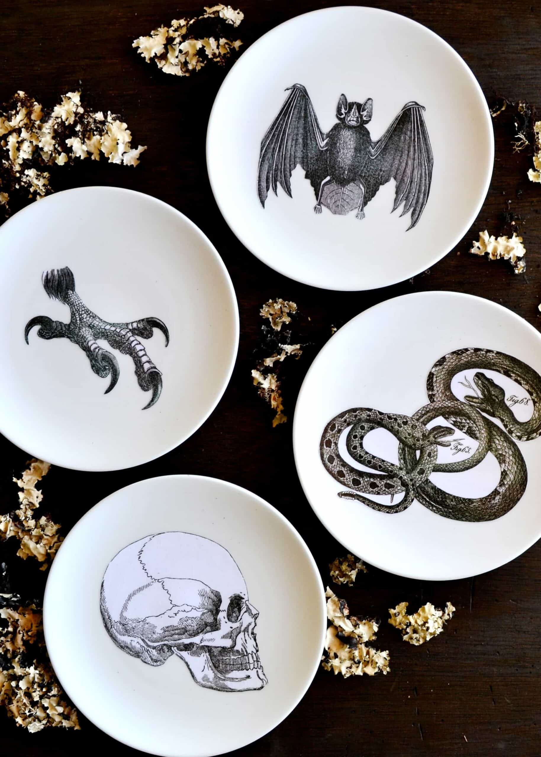 Four plates depicting a snack, a claw, a bat, and a skull on a black table.